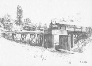 Bridge Crossing near Kandanga
