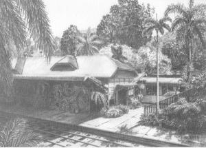 Kuranda Station N.Q